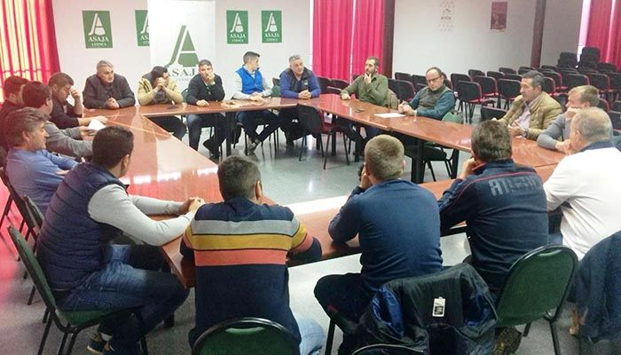 ASAJA Cuenca impulsa una sectorial con ganaderos de porcino para reforzar la defensa de los intereses de este sector