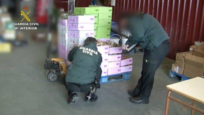 Detienen a seis personas por vender huevos procedentes de Cuenca como si fueran ecológicos sin serlo