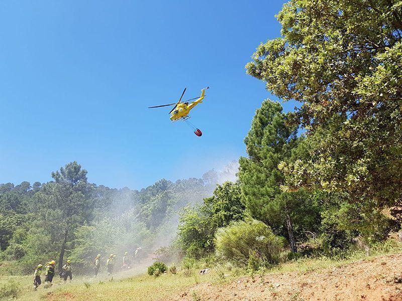 Un total de 14 medios, seis de ellos aéreos, luchan contra el fuego en un incendio declarado en El Picazo