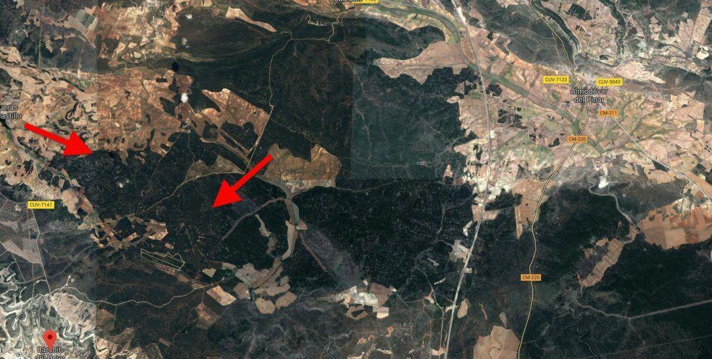 El Ministerio de Agricultura invertirá 400.000 euros para reforestar las zonas afectadas por el incendio de Barchín del Hoyo