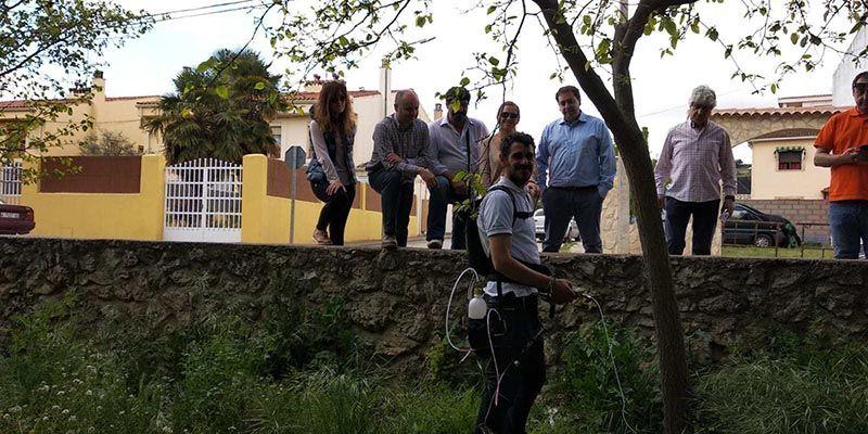 El Ayuntamiento de Huete trata los olmos y otros árboles enfermos