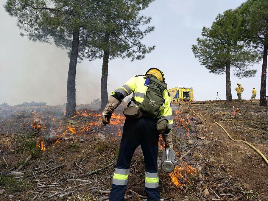 El Gobierno de Castilla-La Mancha adopta medidas excepcionales para prevenir incendios en el medio natural