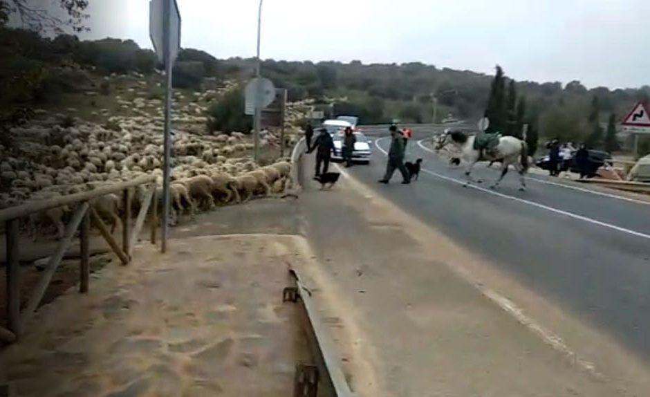 gfrati saliendo de rui e1574079357562   Informaciones de Cuenca