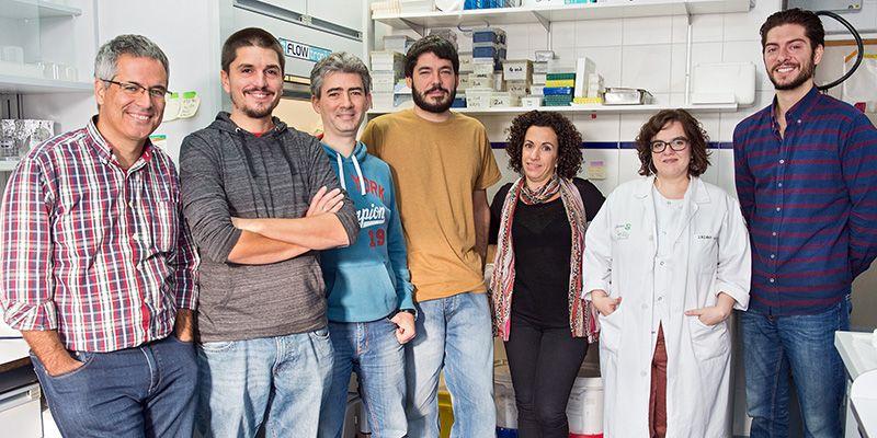 El Hospital Nacional de Parapléjicos y Universidad de Valladolid desarrollarán tecnología basada en biomateriales para la lesión medular
