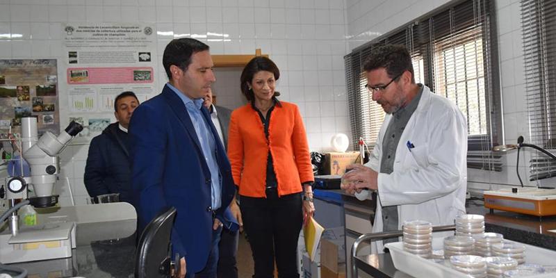 El CIES de Quintanar del Rey ampliará el abanico de investigación a otros productos de la provincia de Cuenca