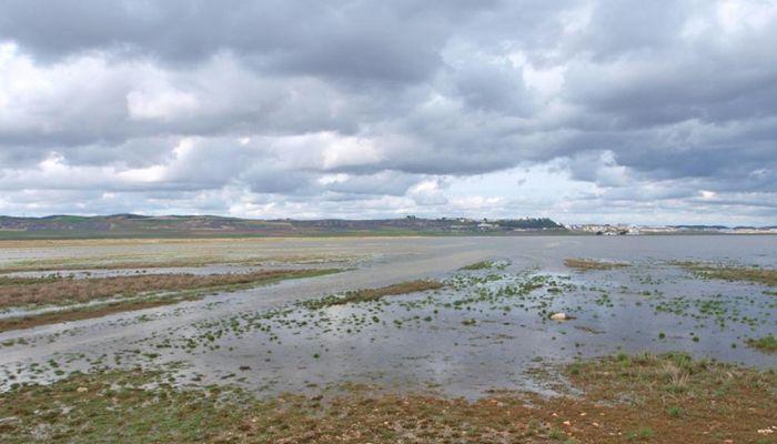 El TSJCM declara nulo el decreto de ampliación de la ZEPA en la laguna de El Hito hasta 25.000 hectáreas