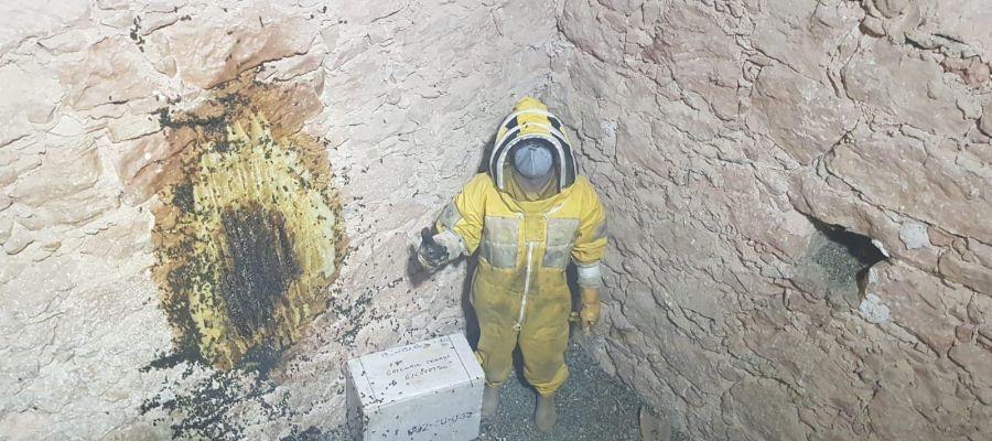Los bomberos de Cuenca retiran un enjambre de 50.000 abejas de la iglesia de Villagarcía del Llano