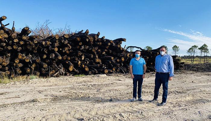 El PP lamenta la dejadez de la Junta en la regeneración del monte incendiado hace ya más de un año en la zona de Barchín
