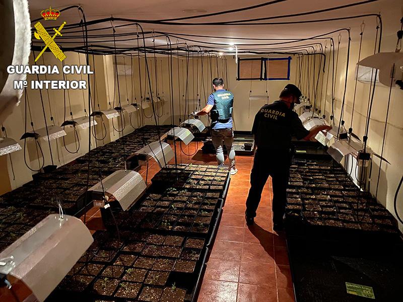 La Guardia Civil detiene a una persona por cultivo de marihuana en un chalet del Pinar de Jábaga