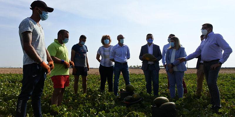 Castilla-La Mancha, líder nacional en melón y sandía, gracias al uso eficiente del agua que hace rentable las explotaciones y genera empleo
