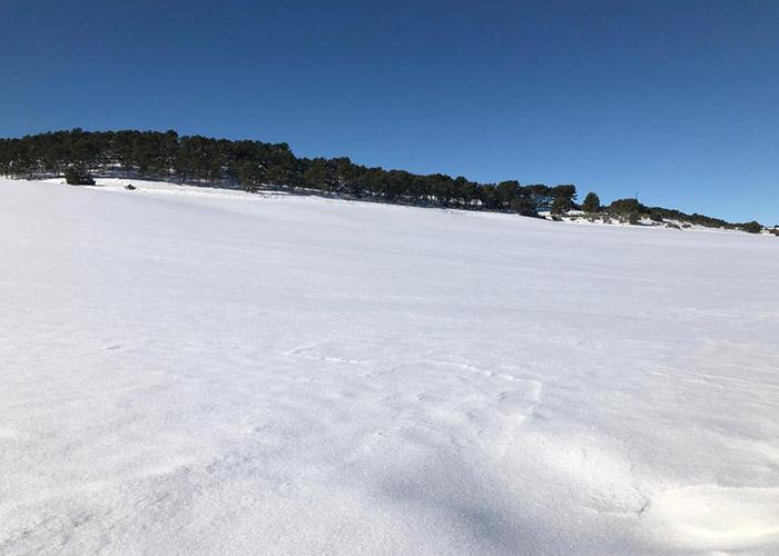 Campo de cereal nevado en la Mancha