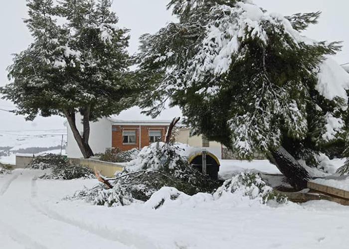 El Ayuntamiento de Tarancón cierra los parques y el cementerio municipal para evitar posibles incidentes con el temporal