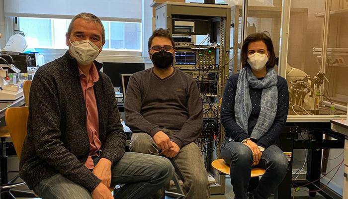 Un estudio de la UCLM aglutina los últimos hallazgos sobre el funcionamiento del canal GirK para el control de la actividad neuronal