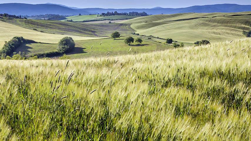 La UCLM invita a entidades públicas y privadas a adherirse al nuevo programa de prácticas universitarias en zonas rurales