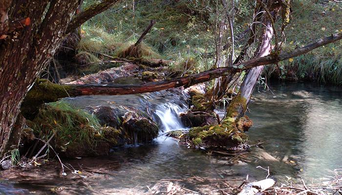 Nace una asociación interprovincial española para la protección y defensa del agua