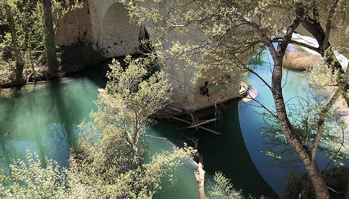 El Ayuntamiento de Cuenca retirará este miércoles los chopos caídos bajo el Puente de San Antón
