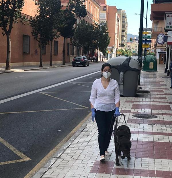 La ONCE entrega ocho perros guía en Castilla-La Mancha a pesar de la pandemia y dedica un cupón al Día Internacional del Perro Guía