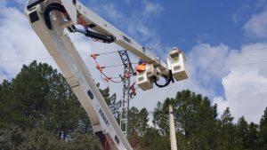 Se instalan sistemas de protección de la avifauna en el tendido eléctrico del Pinar de Jábaga
