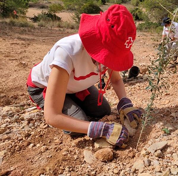 Cruz Roja compensará sus emisiones de dióxido de carbono con acciones de reforestación