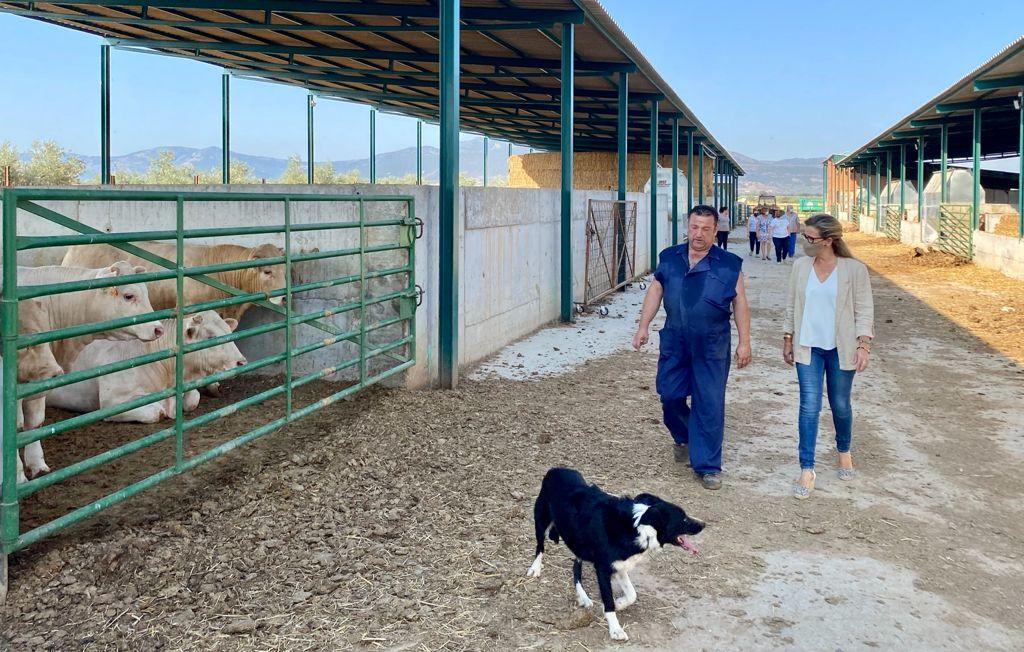 la portavoz del grupo parlamentario popular en las cortes regionales lola merino en su visita a la explotacion ganadera agropecuaria navahermosa etc | Liberal de Castilla