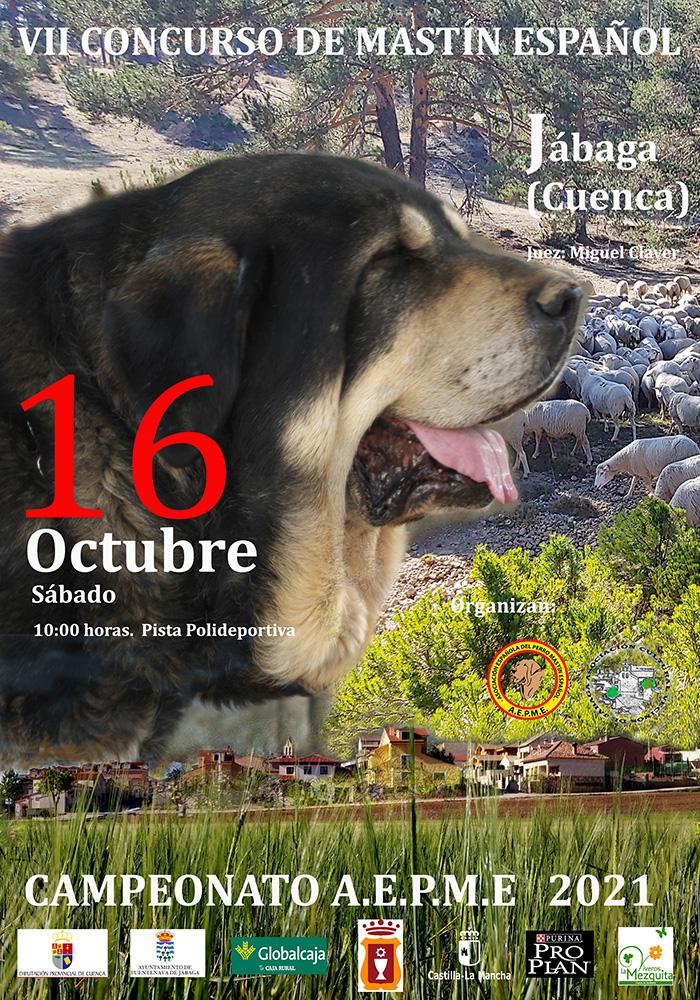 cartel 2021 prensa   Liberal de Castilla